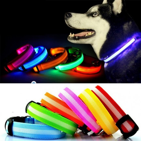 LED šviečiantis šuns antkaklis (Žalias)